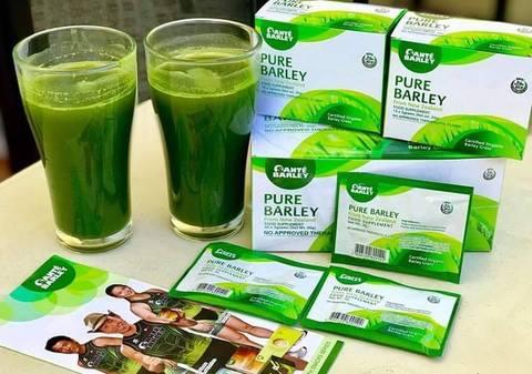 Sante Barley- Benefits & Distributor contact in Nigeria barley nigeriantech.com.ng